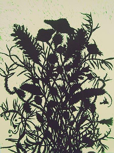 conifer_bouquet