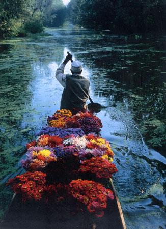 flower_seller