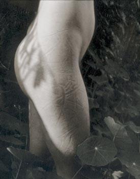 garden_torso