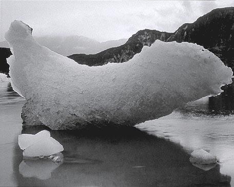 glacier_bay_3a