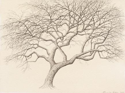 tree_9a