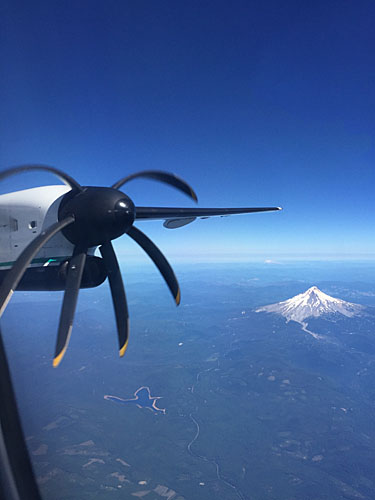 Airplane Wing and Mt Hood1