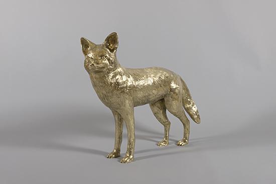 Pasadena Portland Gold Coyote1